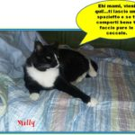Milly, belva sensibile